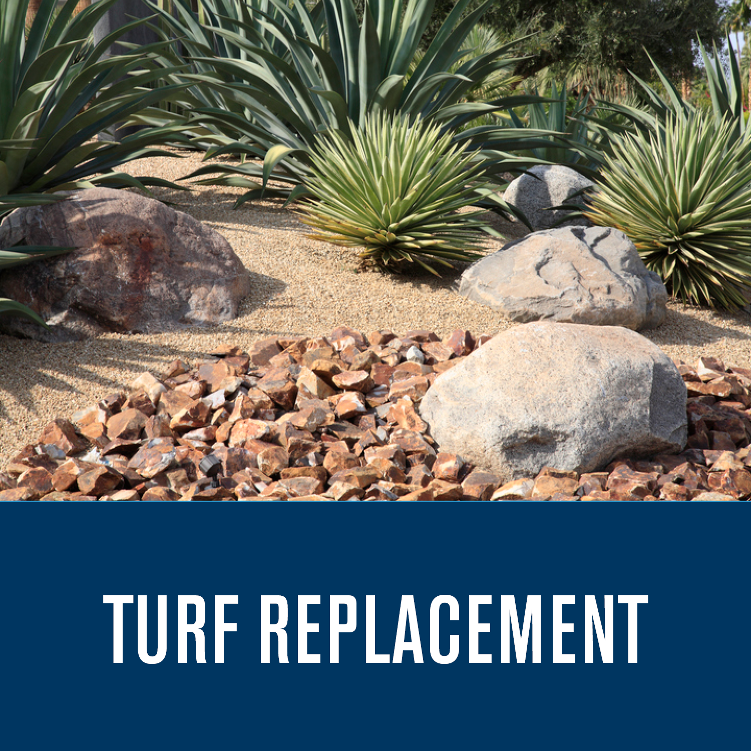 Turf Replacement