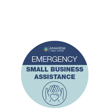 Emergency Small Business Assistance